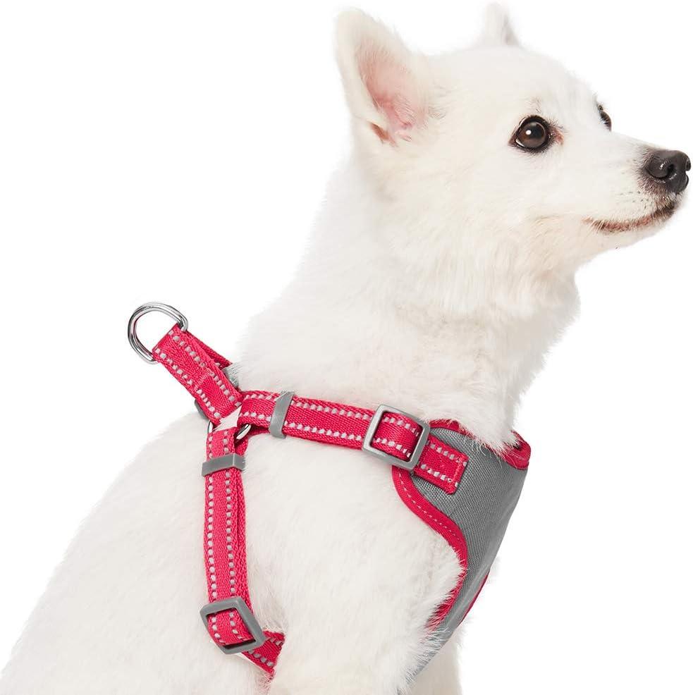 by Umi Harnais r/églable r/éfl/échissant pour chien largeur de poitrail de 56 /à 66 cm Gris taupe pastel taille M