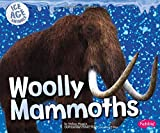 Woolly Mammoths (Ice Age Animals)
