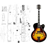 Gibson Stereo Wiring Diagram on gibson custom shop, gibson guitar wiring, gibson custom made plaque,