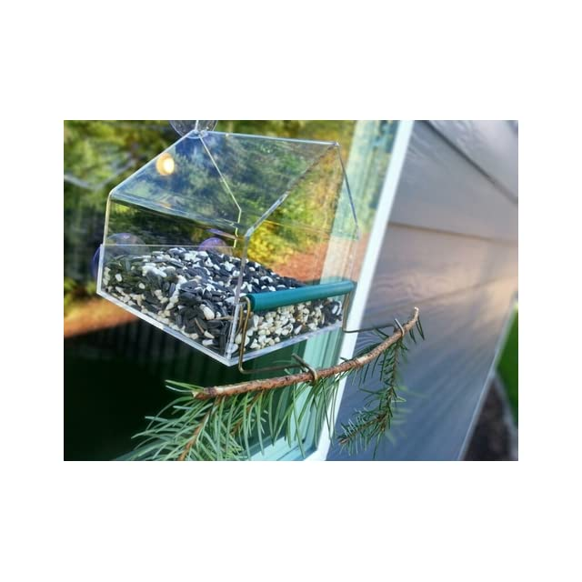Grateful Gnome House Window Bird Feeder for Cardinals and Finches   Clear Acrylic