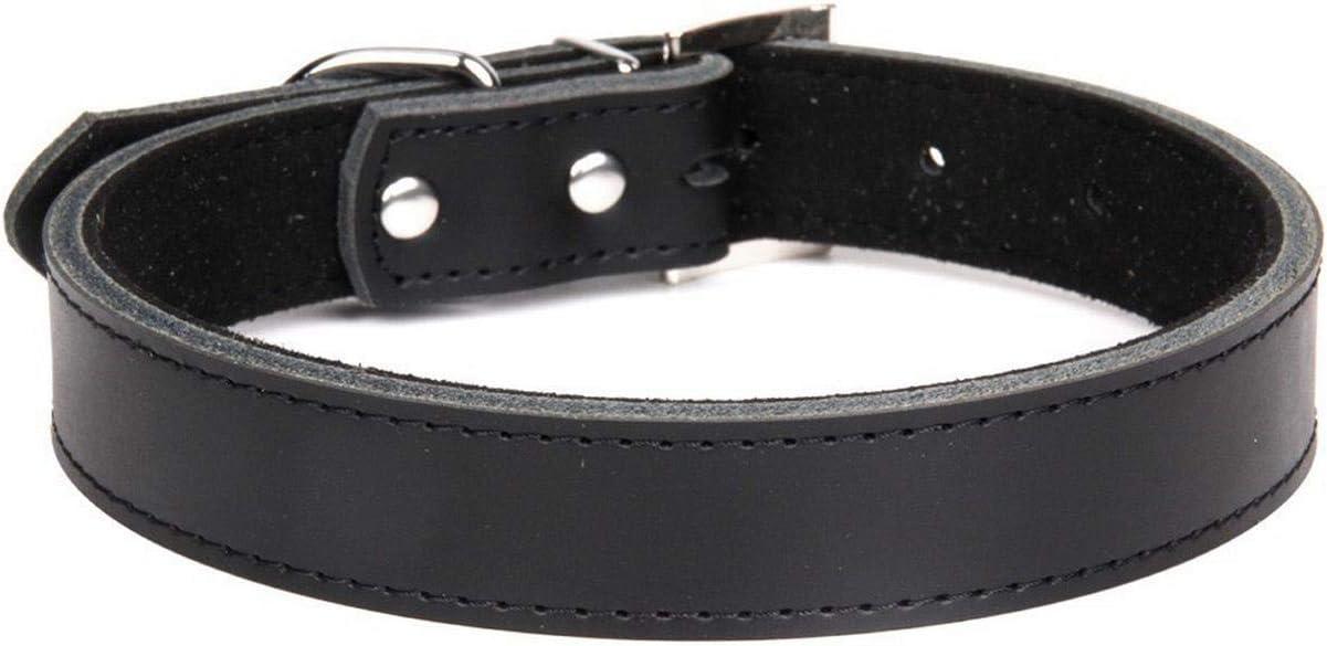 1ピース本革耐久性のあるペット犬の首輪ブラウンブラックレッドオレンジピンクグリーンブルー子犬用大型犬の首輪サイズXS S M L-Black-S