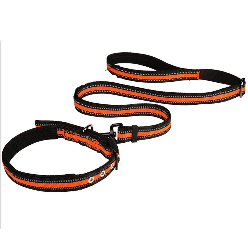 orange Large orange Large Dog Leash Length Adjustable Dog Chain Puppy Collar Small Medium Large Dog Pet Supplies (color   orange, Size   L)