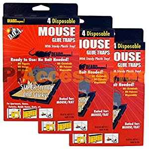 "Pack of 12 d.o.a. Disposable Glue Traps for Mice Rats Mouse Super Stick Tray Lot Each Trap Size 4.5""x3.5"" Inch Brand New"