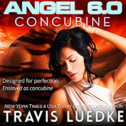 Angel 6.0: Concubine
