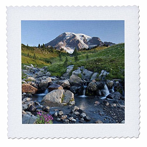 3dRose qs_95231_6 Washington, Mt Rainier NP, Paradise Meadows-US48 CCR0278-Charles Crust-Quilt Square, 16 by 16-Inch