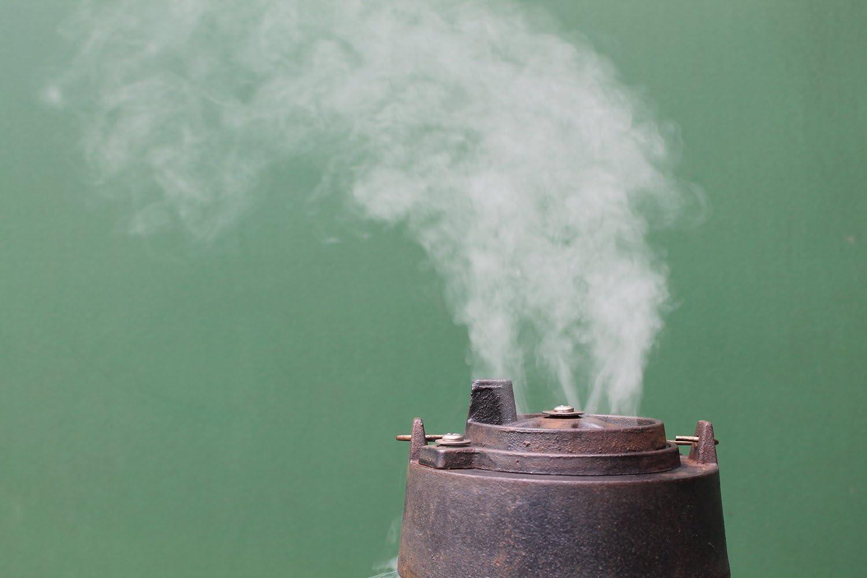 Virutas de madera para barbacoa 3 litros