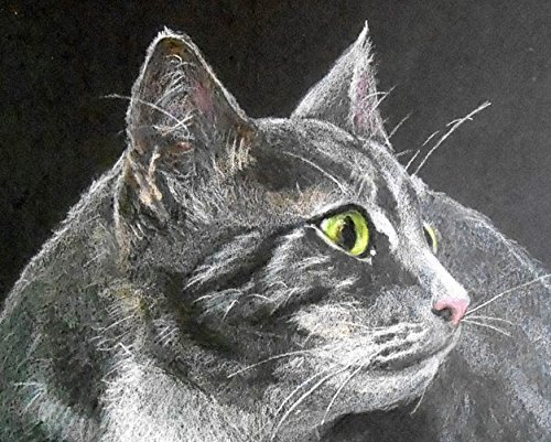 (Tabby Cat Giclee Art Print from Original Colored Pencil Portrait, Signed by Artist, Robin Zebley)