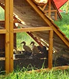 Portable Chicken Coop with Cedar Roof Houses up to 6 Hens