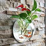 Fish Bowl Acrylic Hanging Aquarium Wall Mounted 1.5 Litre Pet Fish Tank (big)