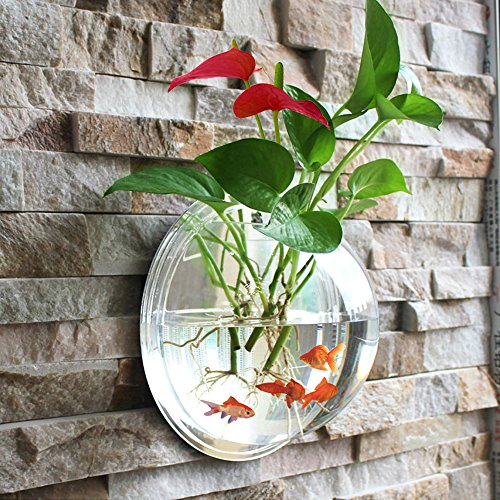 (Fish Bowl Acrylic Hanging Aquarium Wall Mounted 3 Litres Pet Fish Tank (big))