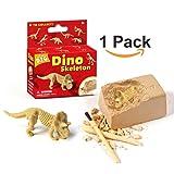 XX Excavation Dig Kit for Kids Dinosaur Bone