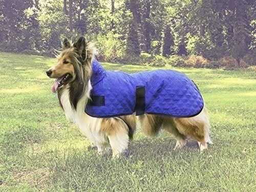 Derby-Originals-Hydro-Cooling-Dog-Jacket-Vest,-Reflects-Heat-&-Keeps-Dogs-Cool-for-Hours