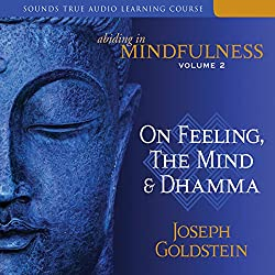 Abiding in Mindfulness, Volume 2