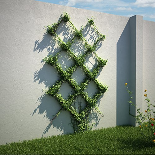 Diamond Pattern Wire Trellis -