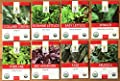 Organic Healthy Greens Seeds Variety Pack - Eight Varieties of Heirloom, Open Pollinated and Non GMO Leafy Green Seeds - Kale, Lettuce, Collard Greens, Arugula, Spinach and More!