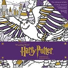 Harry Potter: Winter at Hogwarts: A Magical Coloring Set