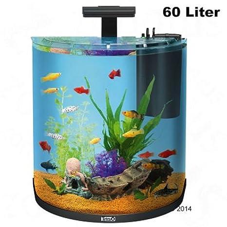 60 litros Half Moon Juego completo de acuario filtro luces peces tropicales