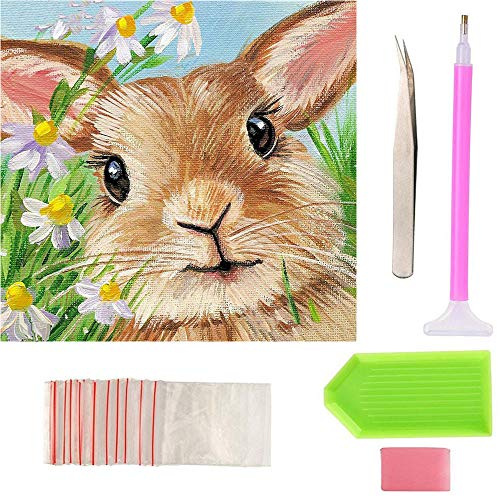 - BeAhity DIY 5D Diamond Painting Kit for Adult Full Drill Rabbit Rhinestone Arts Craft Easter Bunny Wall Décor,11.8X11.8 inch
