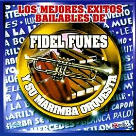 Amazon.com: Por Fin Cayo Mercedes, Marimba de Guatemala: Fidel Funes y