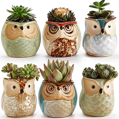 SUN-E 6 In Set 2.5 Inch Owl Pot Ceramic Flowing Glaze Base Serial Set Succulent Plant Pot Cactus Plant Pot Flower Pot Container Planter Bonsai Pots Wi…