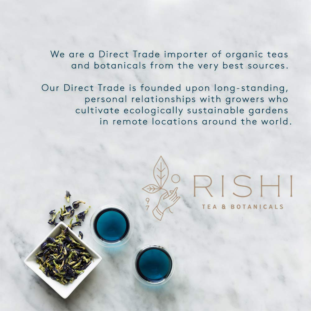 Rishi Organic Concentrate Masala Chai Tea, 32 Ounce -- 12 per case. by Rishi