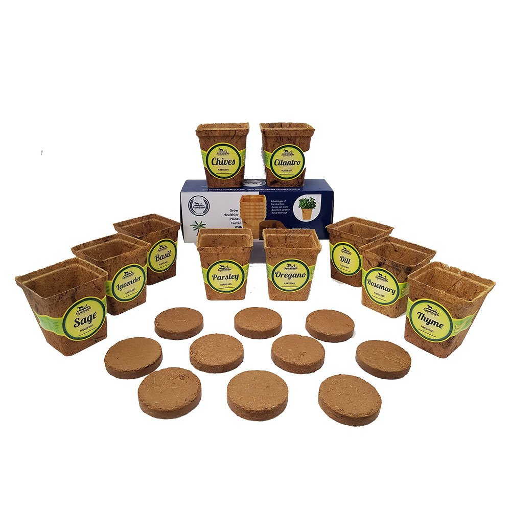 10 Pot Seed Starter Kit with 10 3'' Coconut Coir Garden Pots and 10 Coconut Soil Disks (Windowsill Herb Garden Refill Kit - Seeds Sold Separately) by Sustainable Seed Company