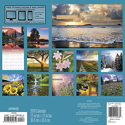 Psalms Wall Calendar (2016)