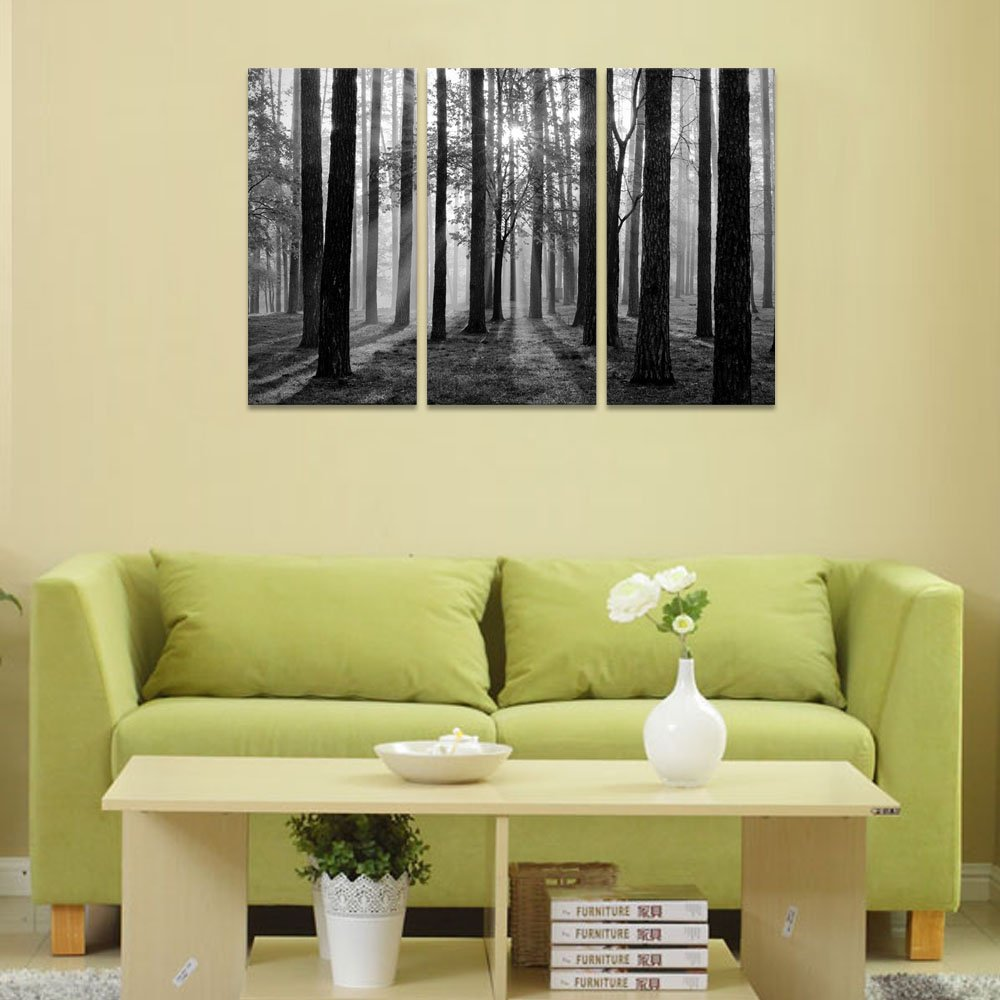 Amazon.com: Black and White Landscape Canvas Wall Art, Modern Wall ...
