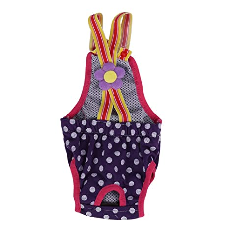 Smandy Pantalones Sanitarios para Perros, 6 Tamaños Mujer Mascota Perro Gato Pañal Pañal Fisiológico Menstrual Ligueros Pantalones Ropa Interior para ...