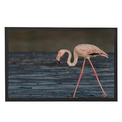 Funny Flamingo Doormat Beach Design Door Rubber Mat 23.6x15.7u0026quot;  Entrance Decor Welcome