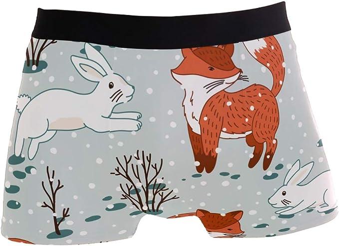 Mens Fashion Foxes and Rabbit Mens Underwear Boxer Briefs Breathable Multi