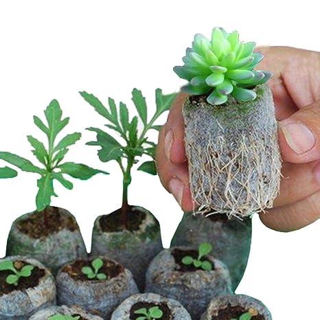 100 PCS 8 10 CM Bolsas de vivero Plantas para Cultivar ...