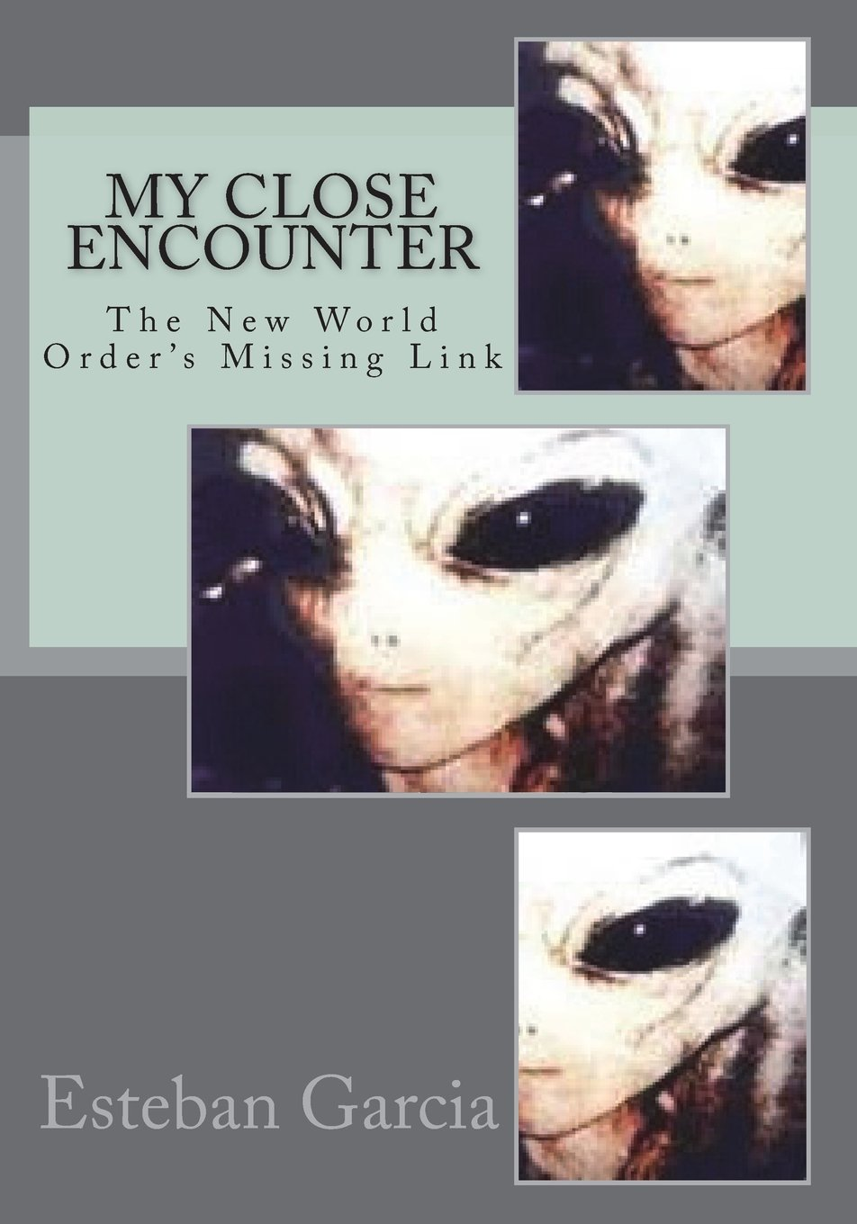 Download My Close Encounter: The New World Order's Missing Link pdf