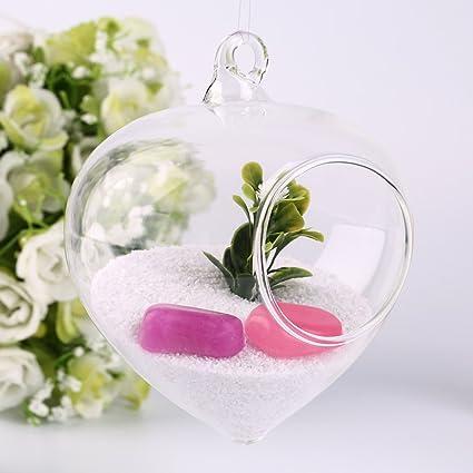 sypure (TM) giroscopio planta florero de cristal transparente Forma Botella oficina casa para colgar