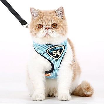 Arnés para gatos con correa de 1,38 m suave y transpirable, colorido: Amazon.es: Productos para mascotas