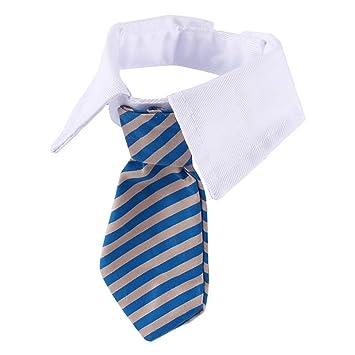 VANKER Ajustable Collar para perro suave de la raya corbata del perro del gato accesorio -- Azul -- S: Amazon.es: Hogar