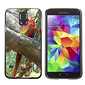 Etui Housse Coque de Protection Cover Rigide pour // M00116159 Ara loro plumaje del pájaro colorido // Samsung Galaxy S5 S V SV i9600 (Not Fits S5 ACTIVE)