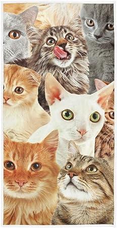 LUPINZ - Toalla de Mano con diseño de Muchos Gatos, 30 x 15 Pulgadas: Amazon.es: Hogar