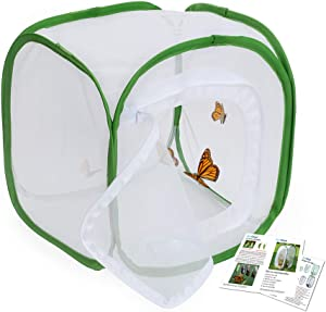 RESTCLOUD Insect and Butterfly Habitat Cage Terrarium Pop-up 12 X 12 X 12 Inches with Zipper Protection