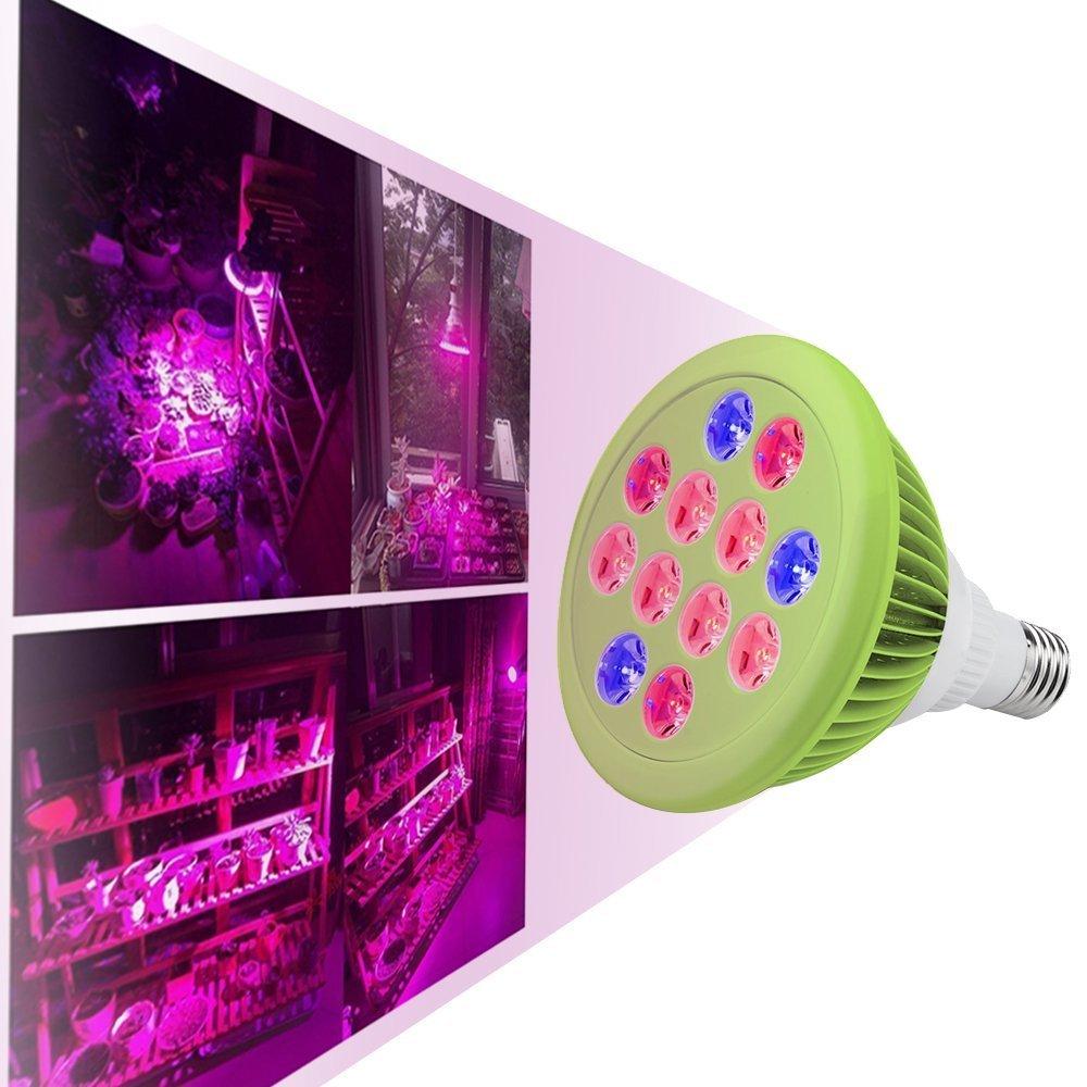 Top-Longer Lampe horticole lampe plante Lampe de Croissance 12 LED -24W E27(3 LED bleues et 9 LED) Lampe Hydroponique Stimulant la Croissance des Plantes d'Intérieur à Fleurs et les Serres de Légumes.85-265V Top-Longer Industry Limited