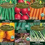 """Container"" Heirloom Vegetable Garden Seeds - 8 Gardening eBooks - Bean, Carrot, Lettuce, Radish, Cucumber, Onion, Squash"