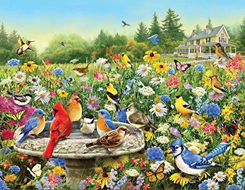 Springbok Puzzles the Gathering Jigsaw Puzzle (500 Piece) (500 Piece Puzzles Birds)
