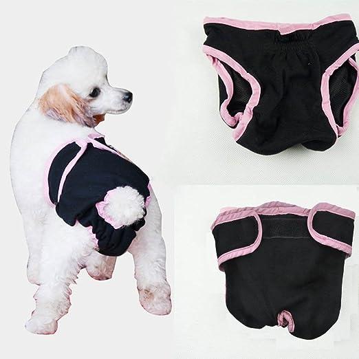 6 opinioni per Dealglad® Copriteiera in cotone, motivo: cucciolo di cane Boxer intimo