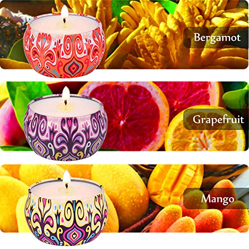 Grapefruit, Mango & Bergamot Scented Soy Aromatherapy Candles, Strong Fruity Fragrance & Essential Oils, 100% Natural Vegan Wax Burns Cleanly Up to 25Hrs, 3x220g Per Travel Tin, Candle Gifts for Women by HYMOSY (Image #1)
