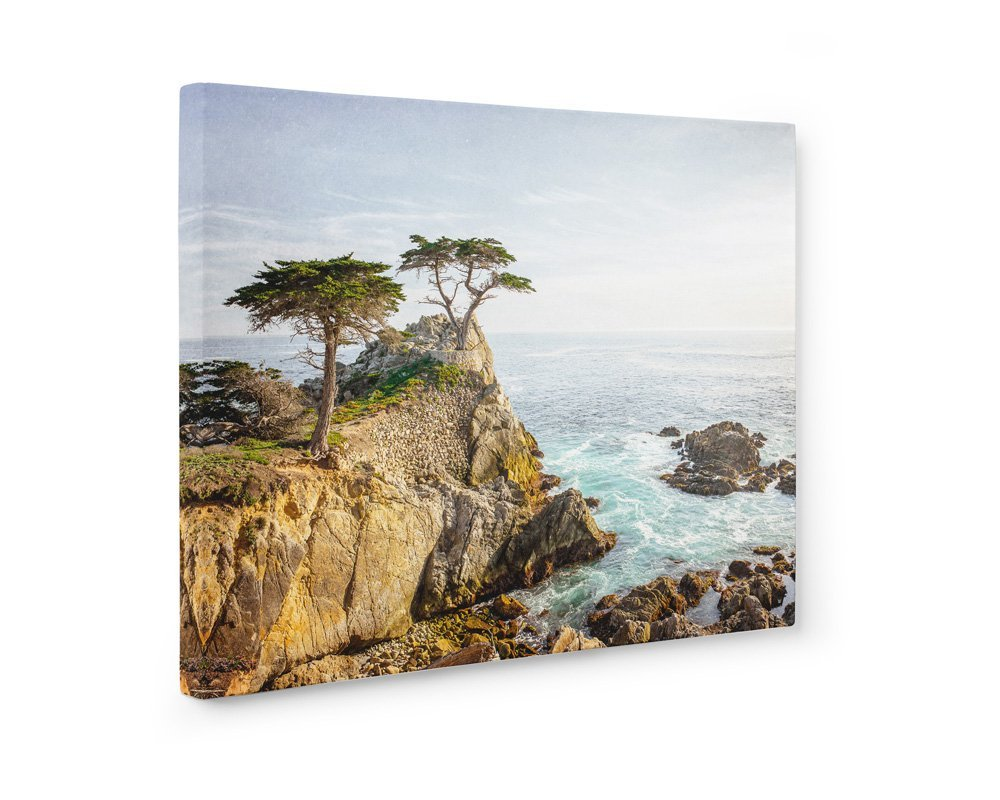 Large Format Print, Canvas or Unframed, California Coastal Wall Art, Lone Cypress Tree Picture, Lone Cypress'