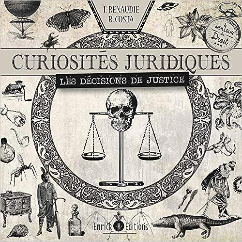 Curiosités juridiques : Les décisions de justice (Français) Broché – 27 octobre 2020