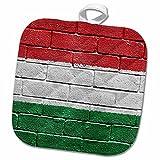 3dRose Carsten Reisinger Illustrations - National flag of Hungary painted onto a brick wall Hungarian - 8x8 Potholder (phl_155244_1)