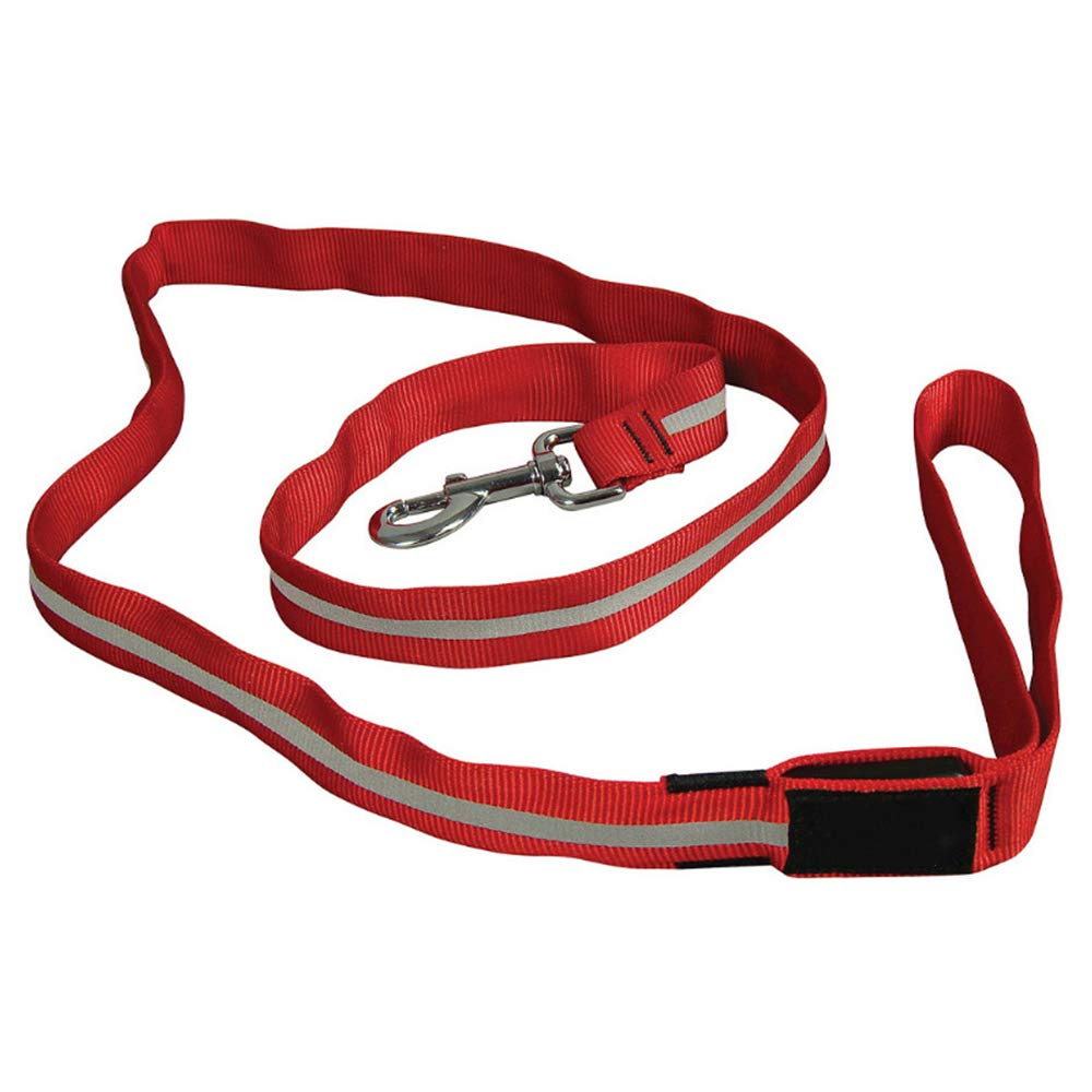LED Dog Leash,high Visibility Durable and Reflective Led Pet Leash,Water Resistant,Avoid Danger,Battery Can Be Replaced