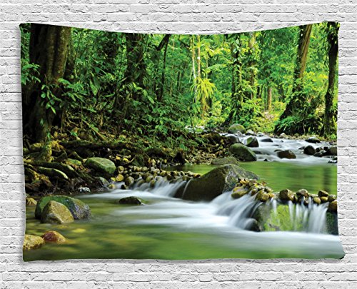 Scene Wall Tapestry (Rainforest Decorations Tapestry by Ambesonne, Mountain Stream in a Tropical Rain Forest Foliage Countryside Wilderness Scene, Wall Hanging for Bedroom Living Room Dorm, 60 W X 40 L Inches Green Brown)
