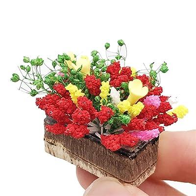 Ouniman 1:12 Mini Dollhouse Miniature Green Plant Flower in Pot Fairy Garden Accessory Decoration Miniature Dollhouse Pots Decor Moss Bonsai Micro Landscape DIY Craft Garden Ornament: Home & Kitchen